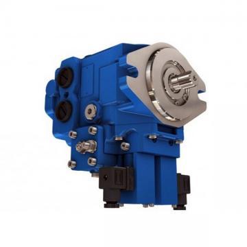 Kompass cilindrata Variabile Pompa A Pistone Idraulica 16CC MANUALE 30-215 BAR