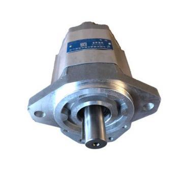 Pompa ad ingranaggi BG30-61