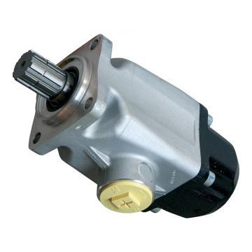 Kompass cilindrata variabile PISTONE IDRAULICO POMPA 36CC Remote 30-215 BAR