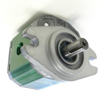 Motore oleodinamico BFT GIUNO ULTRA BT A50 24V P935106 5m 800k idraulico