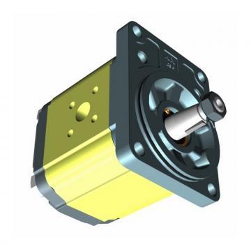 Motore attuatore interrato oleodinamico BFT SUB E SX sinistro P930009 00005 230V