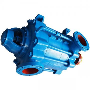 Elettropompa sommersa Lowara pompa sommergibile Scuba SC207C SC211C 1 1.5 Hp