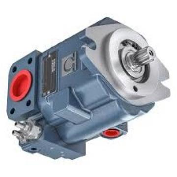 Rexroth PGH4-21/025RF11VK0 Pompa Idraulica Rexroth R900086416 Mai Utilizzato