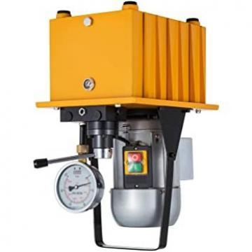 4 QUARTO A Doppio Effetto Pompa Idraulica discarica rimorchio remoto 12V di Sollevamento in vendita