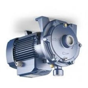 Viking Pump / Index Corporation Modello: Hj495 Pompa. Nuovo Old Stock. No