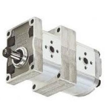 P11A193*BEEK27-92 gear pump 27cc/rev